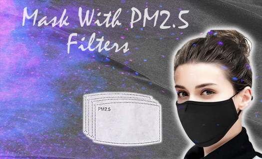 Mask with PM 2.5 Filters